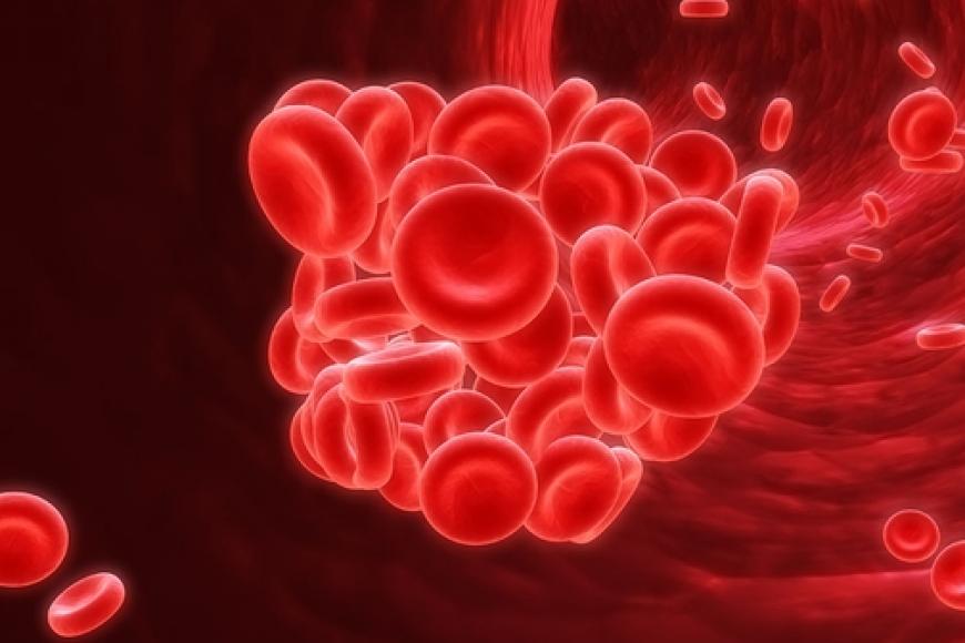 Cơ chế hình thành huyết khối gây tắc mạch trong đột quỵ não