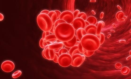 huyết khối là gì
