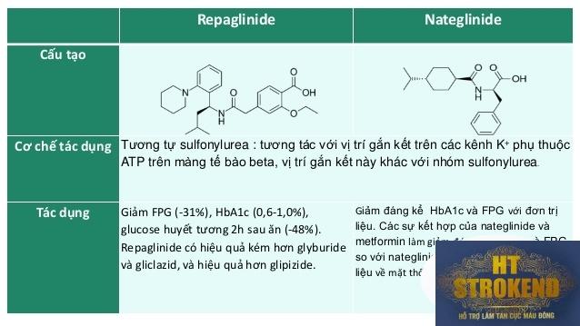 thuốc điều trị đái tháo đường typ 2